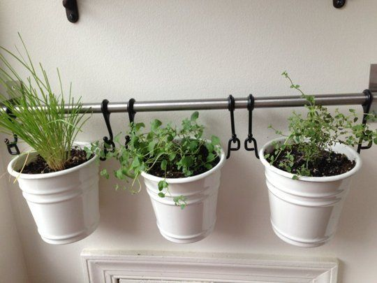 """IKEA fintorp mounted on the wall with herbs in pots--on the kitchen's """"dead"""" brick wall?"""