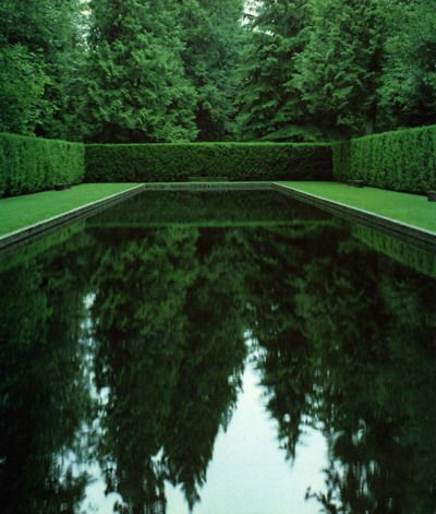 Love the color, perfectly trimmed hedge and reflection in this pool. A thinking or serenity pool vs swimming.