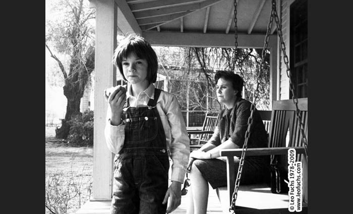 scout's lessons in to kill a This lesson covers chapter 9 of to kill a mockingbird we'll take a look at atticus's new case, how the finch's begin to be the target of racist.