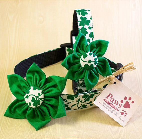 Shamrock Flower Dog Collars | Cute Dog Collars for Saint Patrick's Day