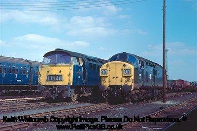 Colour Photo of BR Class 52 Diesel Locomotive D1048 and Class 37 Diesel Locomotive 37021 at Norwood Yard 1976