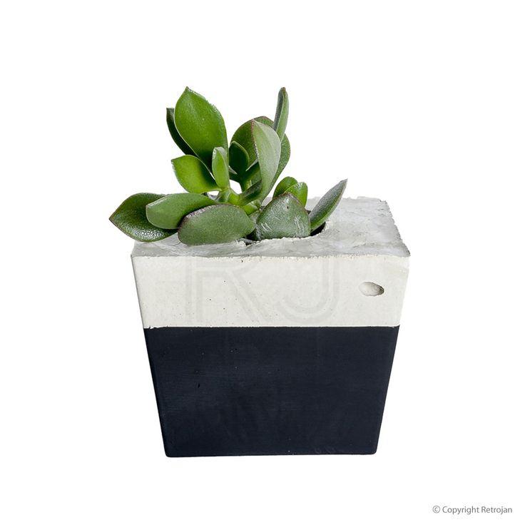 Square Concrete Planter - Black | $54.95