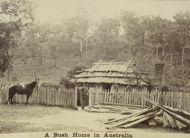 "Album of the Boileau family's voyage from England to Australia in 1894-1895.; Inscription: ""A Bush Home in Australia""- ca. 1895"