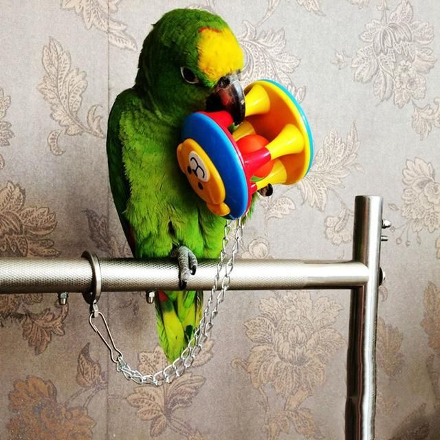 Pet Bird Claw Paw Chew Ball Toys Hamsters Parrot Bites Swing Ball Harness Parakeet Cage Home Colorful For Parrots Swing Cage #parrotcagediy