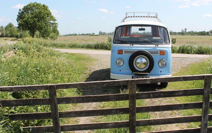 Lenteblijheidjes | Flavourites | Volkswagen T2 busje huren Friesland