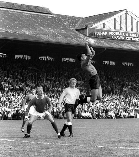 5th September 1964. Fulham goalkeeper Tony Macedo catches a cross ahead of Denis Law of Manchester United at Craven Cottage.