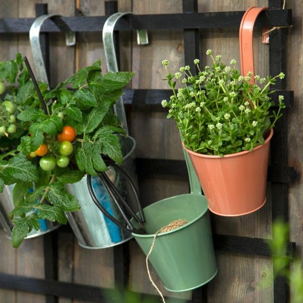 Anna recommends that you make use of the vertical surfaces in your garden or on the balcony to make room for the green delights // Hanging flowerpots, available in four colours and two sizes. Prices from DKK 11,44 / ISK 269,00 / SEK 16,60 / NOK 16,40 / EUR 1,59 / GBP 1,56