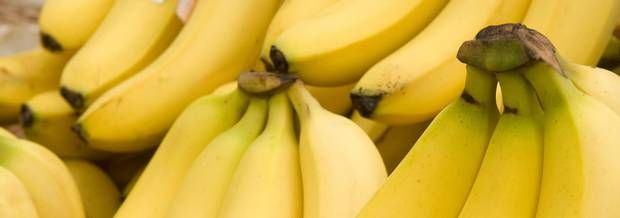 Bananageddon: Millions face hunger as deadly fungus Panama disease decimates global banana crop