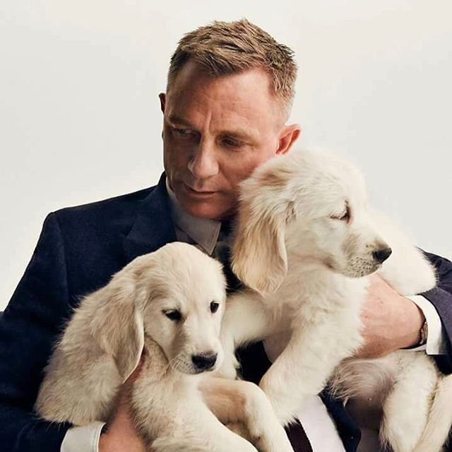 Have you entered yet? Meet Daniel Craig and Take Home an Aston Martin! #UNMAS #Omaze omaze.com/Daniel