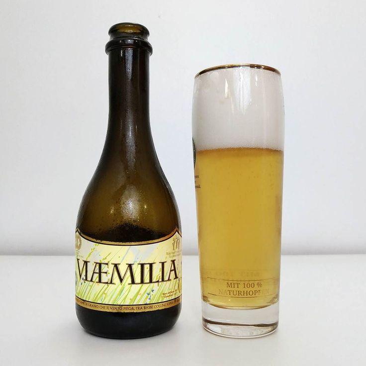 Del Ducato Via Emilia - A Del Ducato é uma cervejaria italiana com 10 anos de produção de cervejas artesanais. Conta com fábrica própria estruturada em duas instalações uma focada em cervejas ácias e envelhecias em barril e outra um pouco mais nova para os estilos clássicos.  A Via Emilia é uma Keller Pils uma cerveja de baixa fermentação com 5% ABV e 34 IBU. Com uma cor amarelo-palha espuma de boa formação e persistência é bem translúcida dando uma impressão que vai ser uma cerveja aguada…