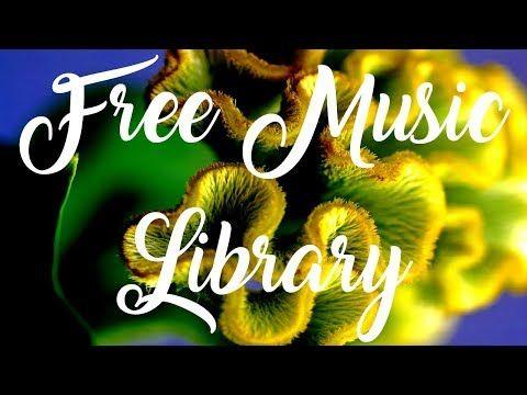 Royalty Free Music | Cold Morning - Audionautix  #freemusic