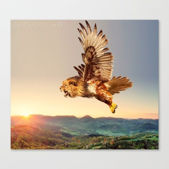 """Fine art print on bright white, fine poly-cotton blend, matte canvas using latest generation Epson archival inks. Individually trimmed and hand stretched museum wrap over 1-1/2"""" deep wood stretcher bars. Includes wall hanging hardware. #hybrid, bird, #hawk, #lion, vintage, #nature, #animal, cool, cool animal, #fairytale, magic, canvas, #photography #mythical #beast"""