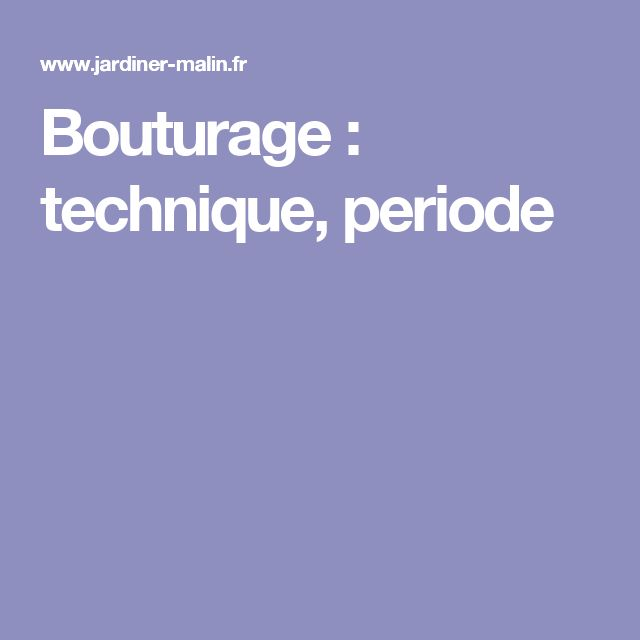 Bouturage : technique, periode