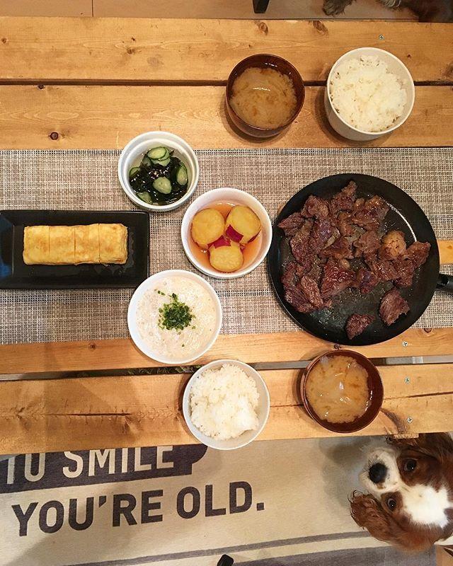 和食が1番好き❤︎白飯が1番好き❤︎ ステーキ。卵焼き。とろろ。酢の物。さつまいものレモン煮。玉ねぎの味噌汁。 ちゃる俺にもくれ。って睨んでる #夜ご飯#おうちごはん#ふたりごはん #和食#和食好き#卵焼き#ステーキ#とろろ大好き#肉#毎日肉#笑#いただきます#ごちそうさま#おやすみなさい#愛犬#欲しがり#食いしん坊#可愛い #dinner#home#house#maid#yummy #japan #japanese#japanesefood #dog#goodnight