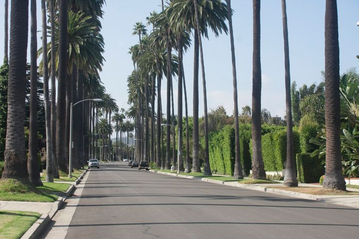 Fay City Diaries: an endless adventure in Los Angeles.