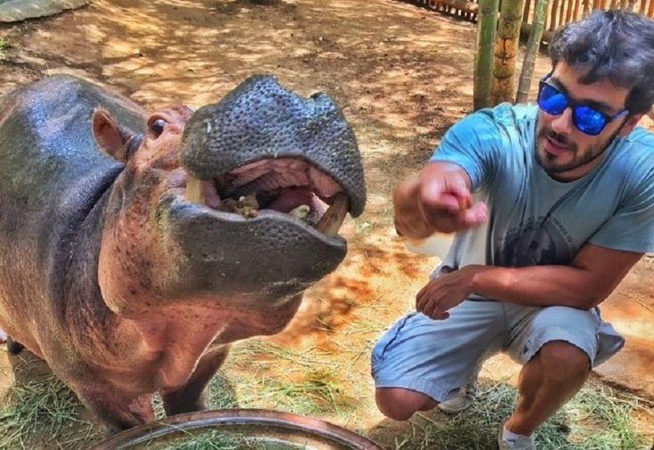 Um roteiro prático pela África do Sul em 10 dias, incluindo safáris, mergulho com tubarões, pinguins, encontros com hipopótamos e muito mais.