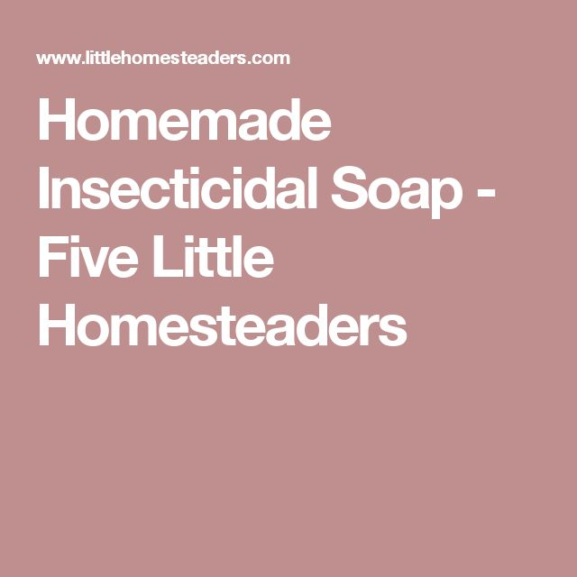 Homemade Insecticidal Soap - Five Little Homesteaders