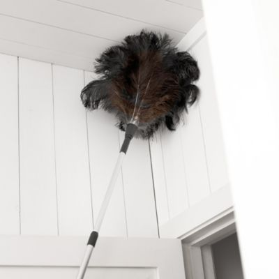 Telescopic Ostrich Feather Duster - Lakeland - £30