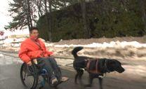 Chien d'assistance pour personne avec handicap moteur | Fondation MIRA