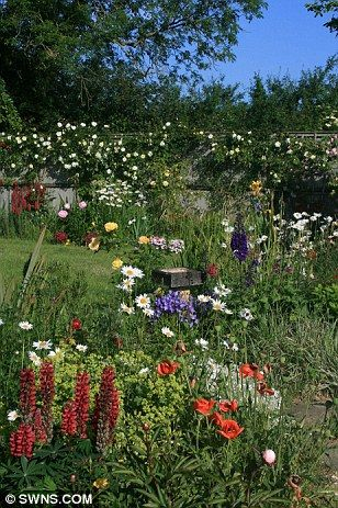 cottage styleGardens Ideas, Cottages Style, Cottages Gardens, Fields Flower, English Gardens, Popular Pins, Flower Gardens Country Style, Birds, Cottage Style