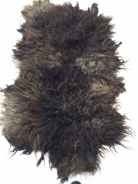 heideschapenvacht Dorky ,Schapenvacht vacht vilten gevilte vacht het kleed op de foto is gemaakt doormiddel van het ambacht: vilten.  klikt u op de foto,s om ze scherp in groot formaat te zien.  Een kleed gemaakt van het ras heideschaap ( zie foto ) in gemêleerde kleuren van hoofdzakelijk zwart en grijs met iets bruin , lekkere stoere ruige vacht in xl formaat.  Een dikke volle ruige vacht.Deze heide schapenvacht is gemaakt van de jas van heideschaap Dorky, Dorky is een jonge ram …