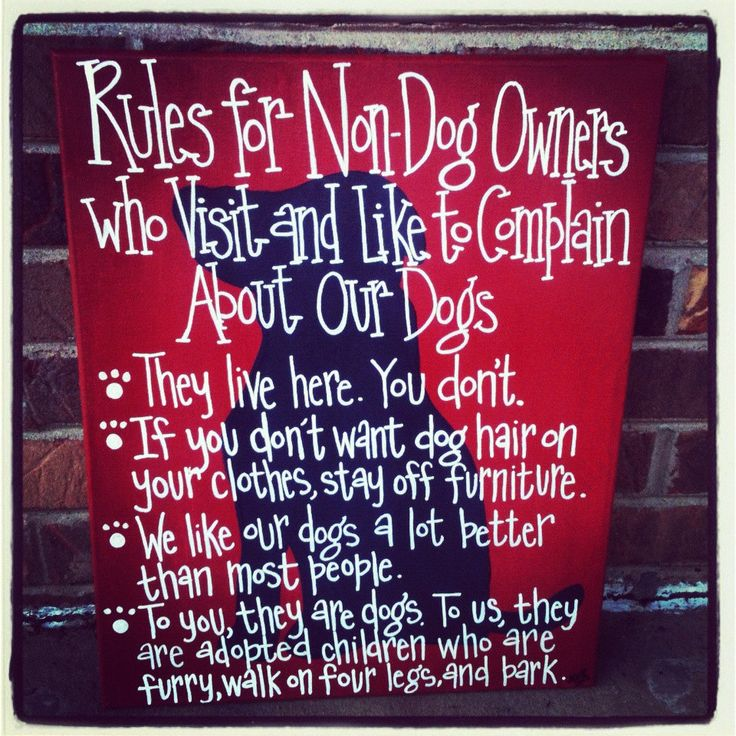 Rules for Non-Dog Owners 16 by 20 Canvas Silhouette Painting. $42.00, via Etsy. I NEEEEEEEEED THIS!!!
