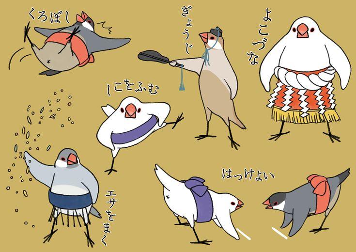 "【Tumblrより】 ""文鳥すもう部屋"" #文鳥 #buncho"