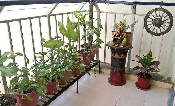 Indian style balcony decor home decor inside out side for Plants decoration in balcony