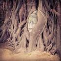 วัดมหาธาตุ (Wat Maha That) - Phra Nakhon Si Ayutthaya