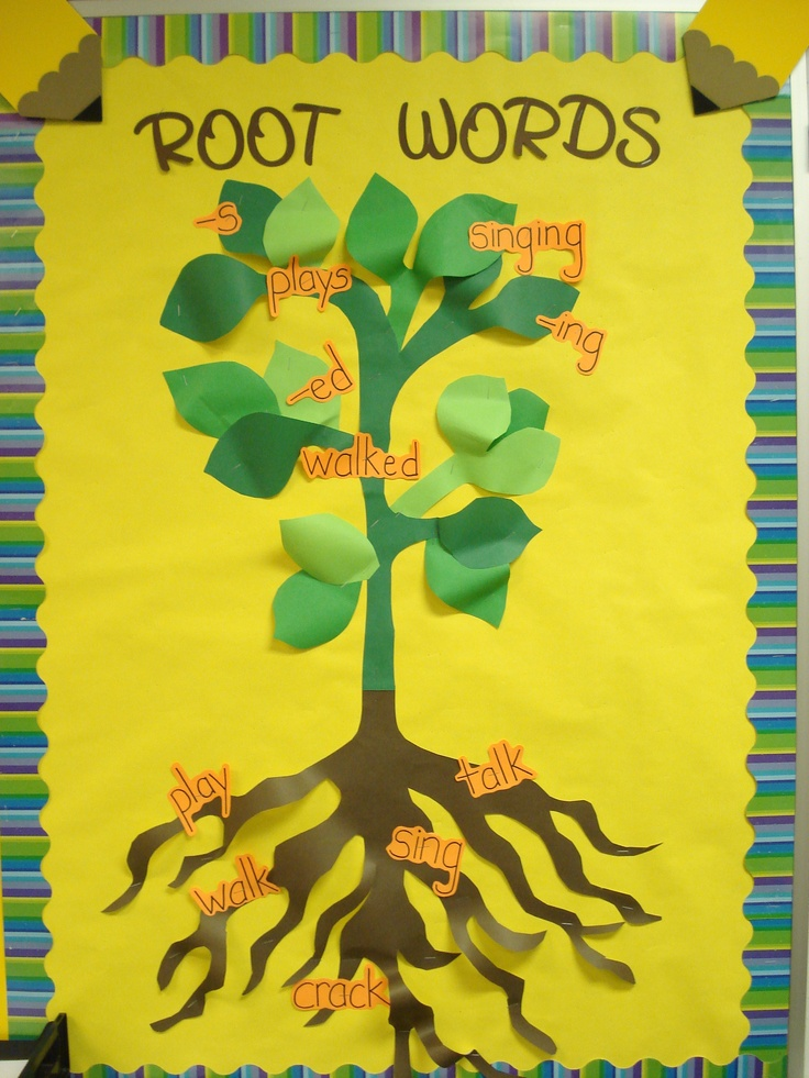 Root Words Language Bulletin Board