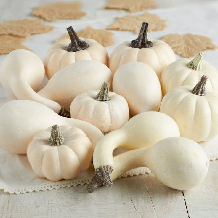 Assorted Harvest White Artificial Pumpkin and Gourds
