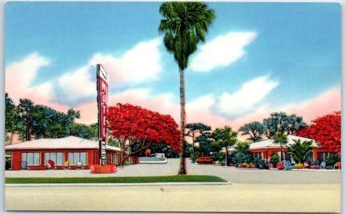 Tampa-Florida-Postcard-034-ROYAL-POINCIANA-MOTEL-amp-Trailer-Park-034-Tichnor-Chrome