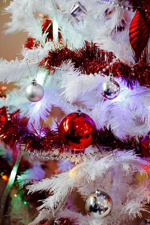 Red & Silver Christmas Decoration  Photo Credit @CHImages