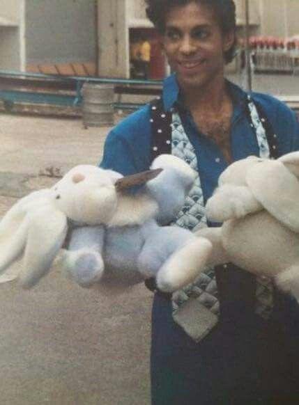 Prince and bunnies.