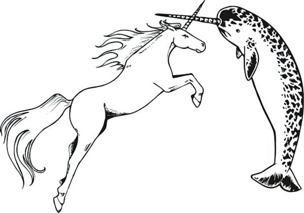 Unicorn Color Pages Narwhal Vs Unicorn Coloring Page Unicorn Coloring Pages For Free Unicorn Coloring Pages Coloring Pages Narwhal