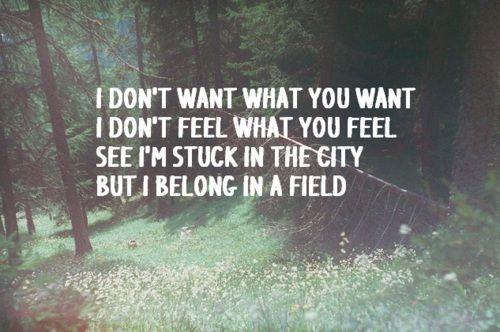 Heart in a Cage // The Strokes