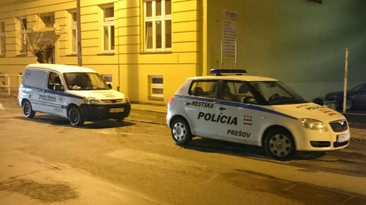 Peugeot Partner & Skoda Fabia