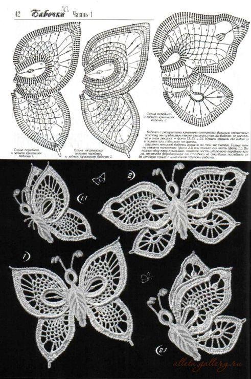 Patron mariposas