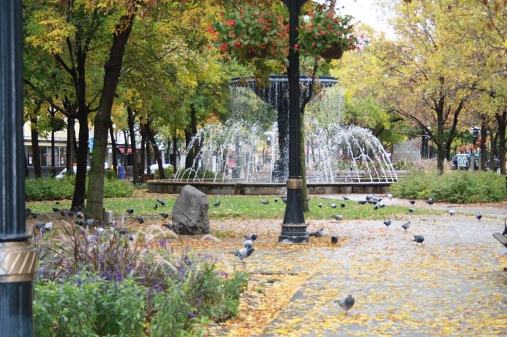 Gore Park, Hamilton Ontario  ©sarahreid