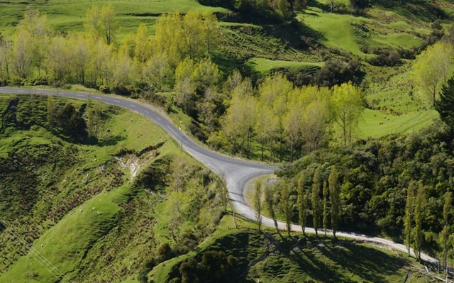 The Country Road is an invitation to find that the middle of nowhere – the great New Zealand wop-wops – is actually the middle of somewhere, and holds many amazing secrets just waiting to be discovered by a curious traveler, a wandering local or a family on a sunday drive.