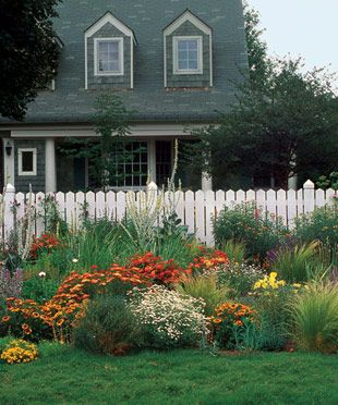A list of fast-growing perennials by zone.  Handy!: Wild Flower, Picket Fence, Front Yard Garden, Front Yards, Gardens