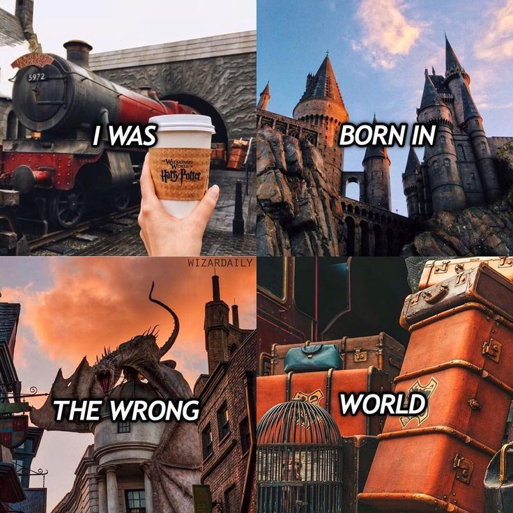 What's your Hogwarts House? ❤️ I'm a Gryffindor – Tag a potterhead who's also born in the wrong world