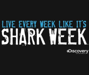 : Awesome T Shirts, Bleach Pens, Funny Sharks, Jeans, Sweatshirts, Week Shirts, Sharks Week Funny, Clarks Sharks, Black