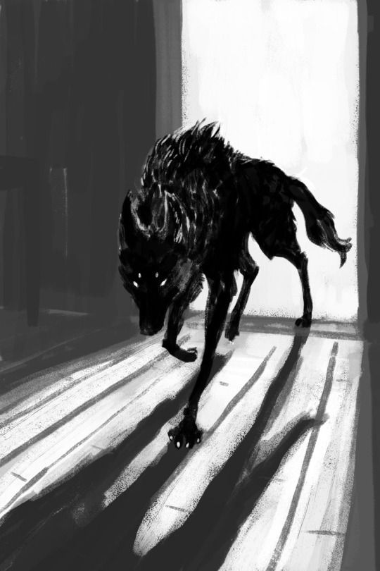 """""""this is the story of how i never stopped running. this is the story of how, when the wolves knocked, i met them at the door and i became the beast, instead. -   ashe vernon, from """"little red,"""" belly of the beast"""