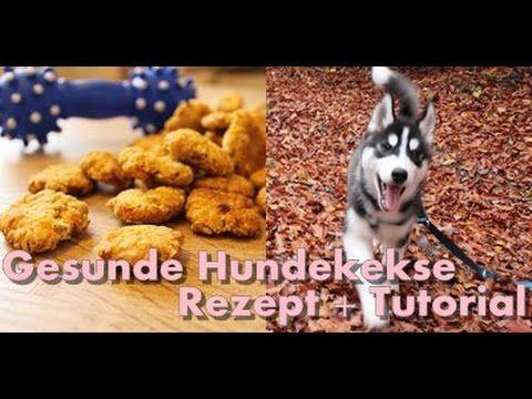 DIY Gesunde und einfache Hundekekse für jeden Hund // Husky Kenji☆ I ell...