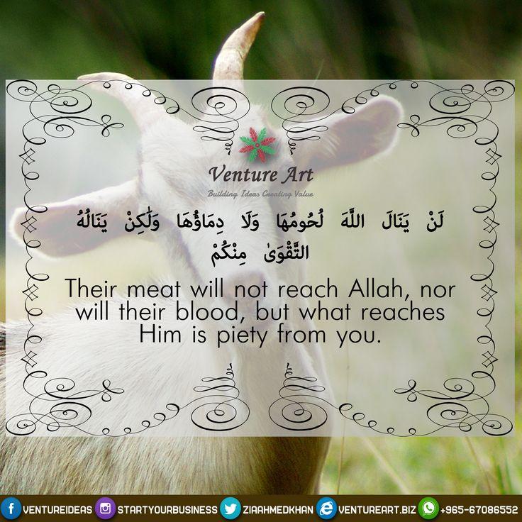 Arafat Day! #tahaf #cübbeliahmethoca #mina #bahrain #kwiaty #picture #photo #do3a #hajj #keswah_abaya #morning #uae #jeddah #saudi #صيام_عرفه #يوم_عرفة #تذكير #الله #quran #allah #ramadan #alhamdulillah #islamicquotes #islamic #backbiting #duaa #sunnah #prophetmuhammad #jannah #hadith