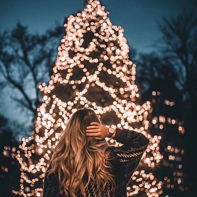 Bringen Sie die riesigen Weihnachtsbäume an. Ich hoffe, Sie sind alle bereit für mein endloses Urlaubsthema. ❄️✨ Zu dieser Jahreszeit renne ich herum …