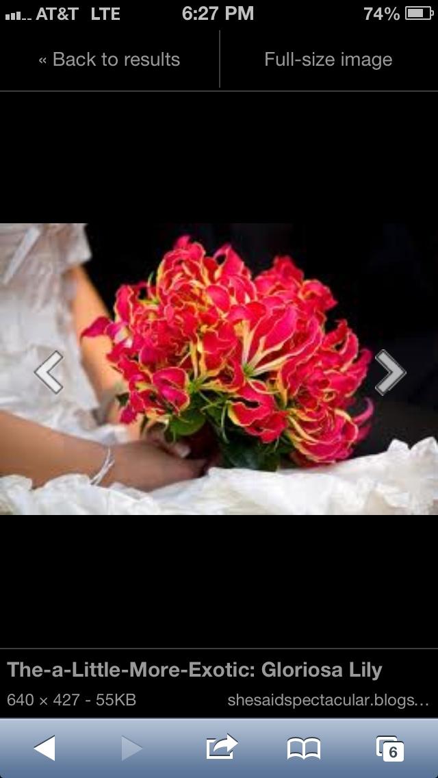 Gloriosa bridesmaid bouquet.