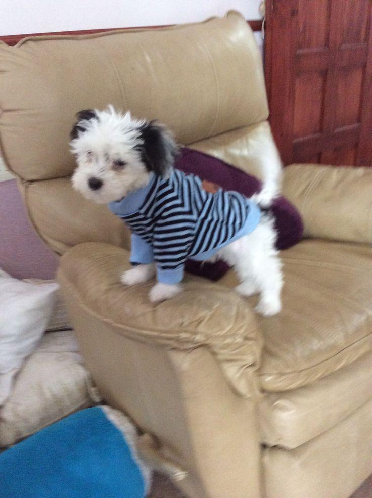Con un clásico suéter a rayas muy chic, ideal para ir al cine