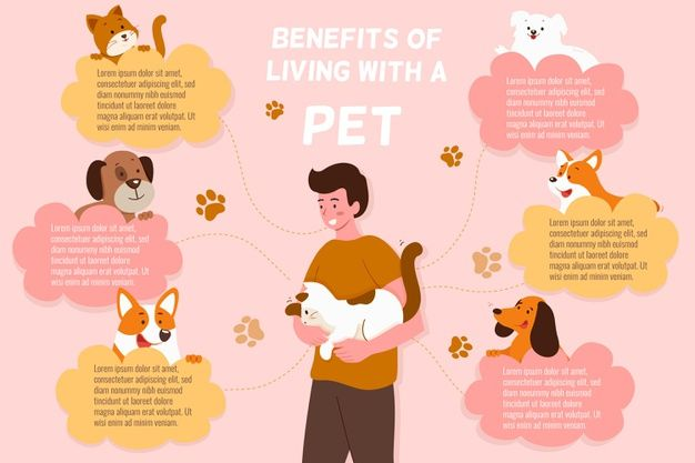 Infographic Of Benefits When Living With Premium Vector Freepik Vector Infographic Dog Infographic Pet Poster Graphic Design Infographic